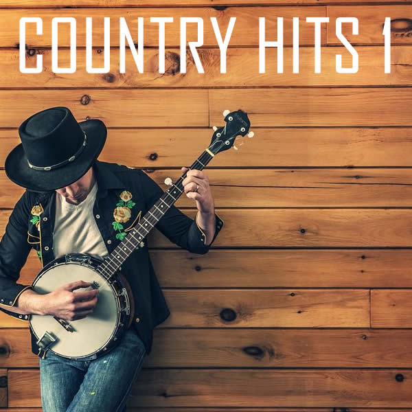 Vocal-star Country vol 1 Hits