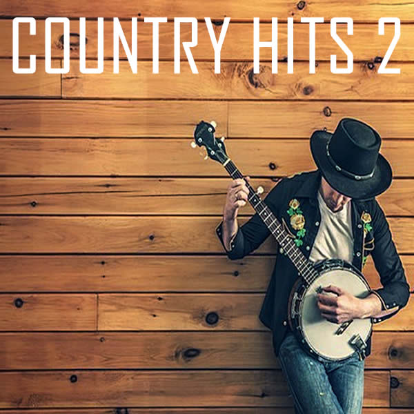 Vocal-star Country vol 2 Hits